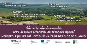 Ateliers découverte des métiers de la vigne et du vin